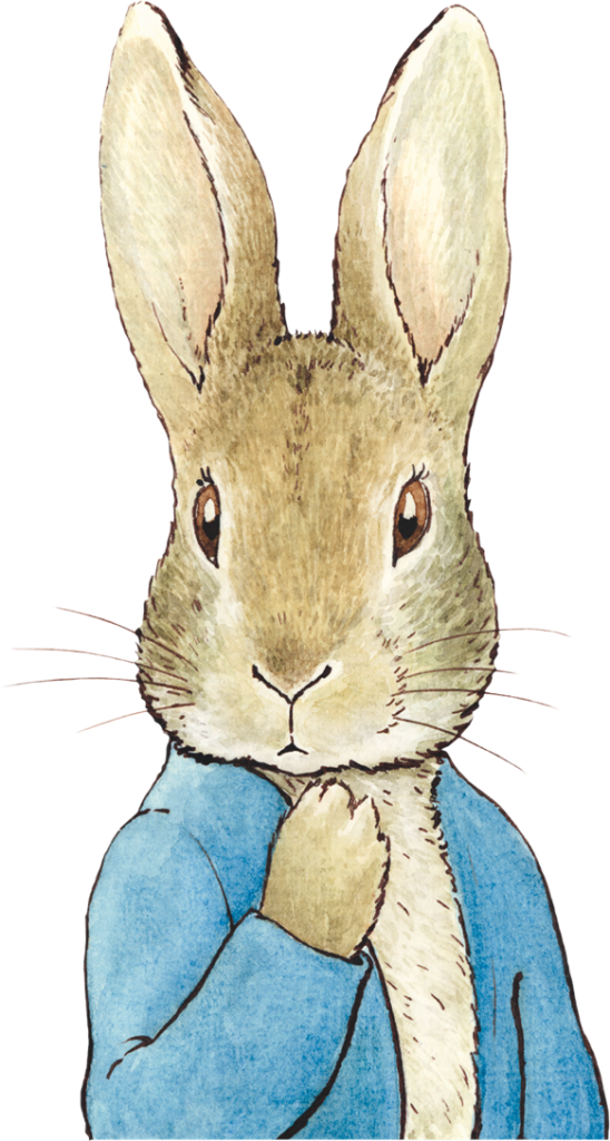 A large image of Peter Rabbit adjacent to the email newsletter signup element